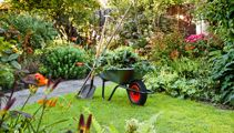 Jackie Gower - How does your garden grow?