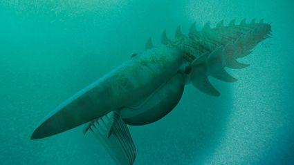 A Very Big Lobster (Crayfish)