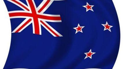 10,000 New Flag Ideas