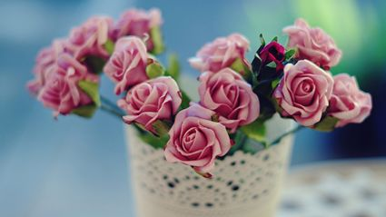 Want to keep flowers fresh?