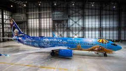 The 'Frozen' Plane