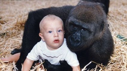Girl Reunited With Gorilla - 12 Years On