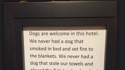Hotel's Hilarious Notice That Explains Why Dogs Are More Welcome Than Humans