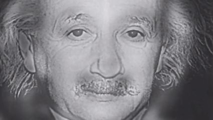 What Face Do YOU See, Albert Einstein Or Marilyn Monroe?