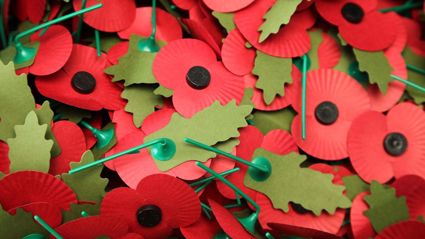 Remembrance Poppy: How To Wear A Poppy Correctly