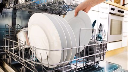 Did You Know Your Dishwasher Could Do This?