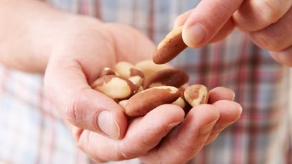 Eating Nuts Could Slash Prostate Cancer Death Risk By A Third