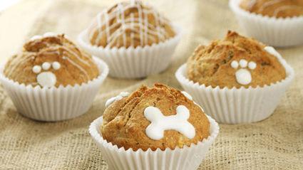 Pupcakes Recipe