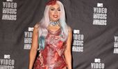 What Lady Gaga's Meat Dress Looks Like Five Years Later...