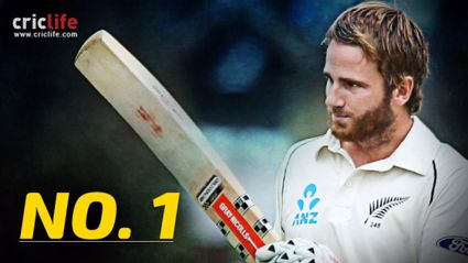 Cricket with Kane Williamson.