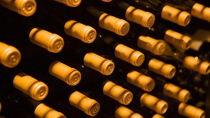 Julie Harrison - Argentinian Wine