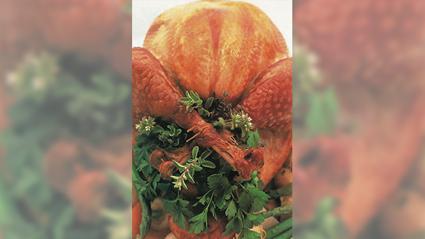 Allyson Gofton - Cuban turkey