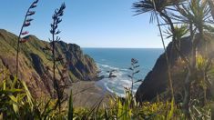 This NZ beach has been named among the best in the world