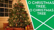 O Christmas Tree, O Christmas Tree photos
