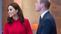 William is mistaken for Harry in hilarious royal engagement gaffe