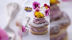 Allyson Gofton - Blackcurrant Vol-au-Vents
