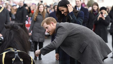 Watch the hilarious moment Harry gets bitten by a pony while Meghan chuckles