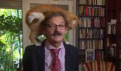 Polish historian hilariously interrupted by cat in interview