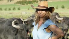 From art teacher to award winning food producer: Helen Dorrestyn