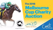 Melbourne Cup Charity Auction