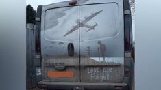 Artist creates an amazing Armistice Day tribute on the back of a van