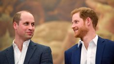 Documentary reveals how William hurt Harry over claims about Meghan