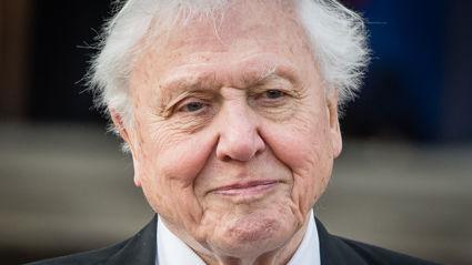 Sir David Attenborough says he hasn't got long left to live
