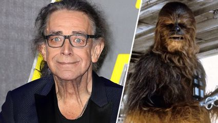 Chewbacca actor Peter Mayhew has died