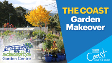 NORTHLAND: The Coast Garden Makeover with Sciadopitys Garden Centre