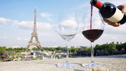 A wine theme park has opened in France and it is every adult's dream!