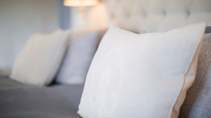 Science has just found a pillowcase has more bacteria on it than a toilet!