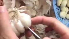 People are losing their minds over this genius garlic peeling hack!