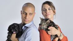 Science has just proved dog owners are happier than cat owners ...