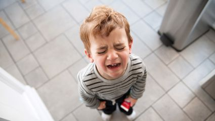 Study finds that tantrums might actually be a sign of future success!