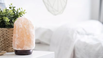 Vet calls for pet owners to be careful with salt lamps after Kiwi woman's cat nearly dies