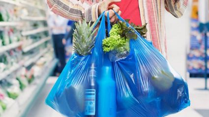 This woman's genius solution to the plastic bag ban is blowing people's minds