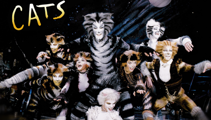 CATS is being turned into a movie with a star-studded cast including Idris Elba, Judi Dench and more!