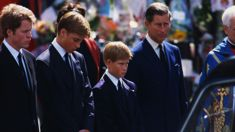 Prince Charles reportedly risked his life by walking in Princess Diana's funeral procession
