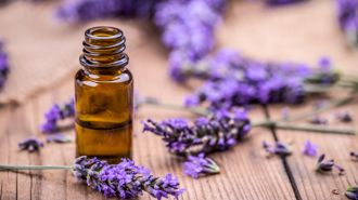 New study finds that lavender oil may cause breast growth in children as young as three