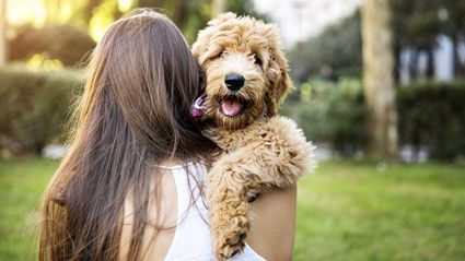 A new study has claimed owning a dog can make you live longer