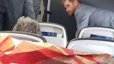 Prince Harry stuns passengers by flying from Tokyo in premium economy