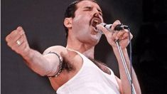 Think you can sing like Freddie?