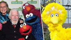 Sesame Street's Big Bird puppeteer Caroll Spinney has died