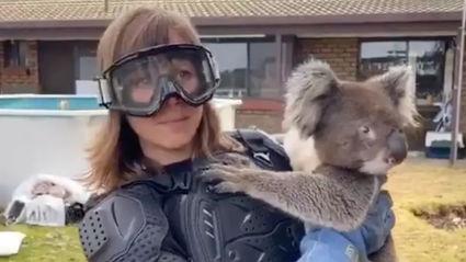 "Australians play hilarious ""drop bear"" prank on journalist covering Kangaroo Island bushfires"