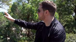 Michael Bublé sings for gorillas who love his Christmas album at Australian zoo