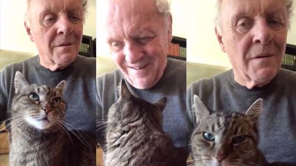 Sir Anthony Hopkins playing piano for his cat Niblo