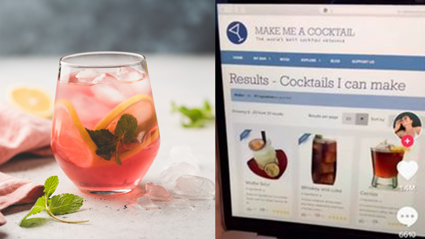 Amazing Website Designs Cocktails based on what is in Your Pantry