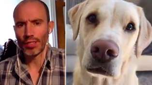 WATCH: Another Andrew Cotter Dog commentry that may be the best one yet!