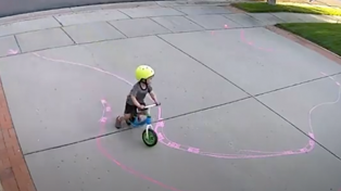 Man finds adorable way to entertain 'trespasser' on his driveway