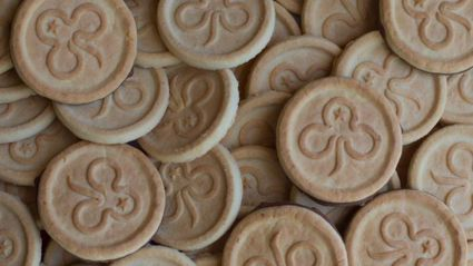 Girl Guide biscuits are now available in supermarkets!